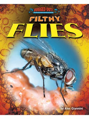 cover image of Filthy Flies