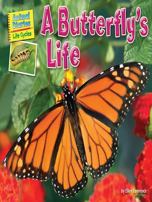 cover image of A Butterfly's Life