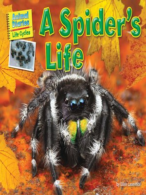 cover image of A Spider's Life