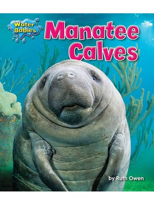 cover image of Manatee Calves