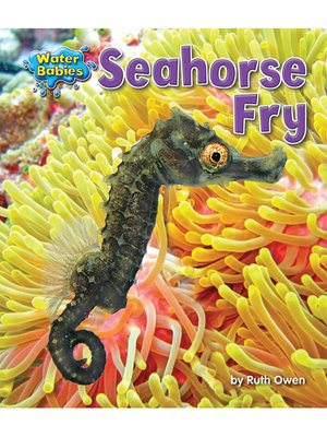 cover image of Seahorse Fry
