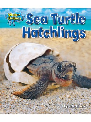 cover image of Sea Turtle Hatchlings