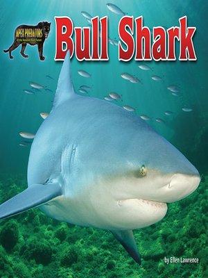 cover image of Bull Shark