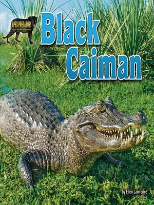 cover image of Black Caiman