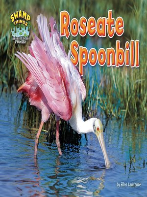 cover image of Roseate Spoonbill