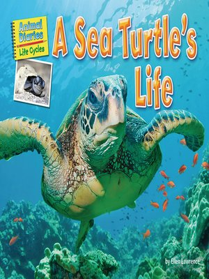 cover image of A Sea Turtle's Life