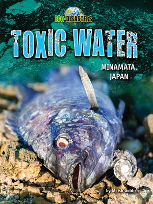 cover image of Toxic Water