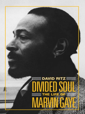 cover image of Divided Soul