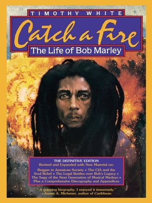 cover image of Catch a Fire