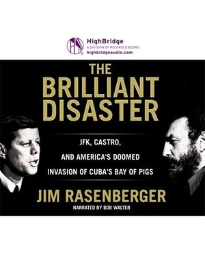 cover image of The Brilliant Disaster