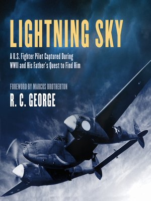 cover image of Lightning Sky