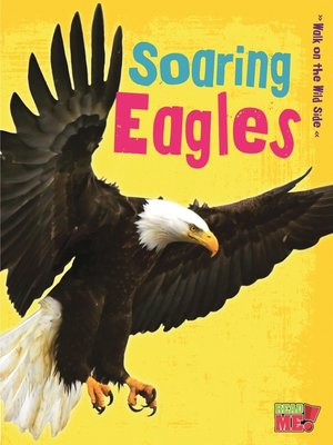 cover image of Soaring Eagles