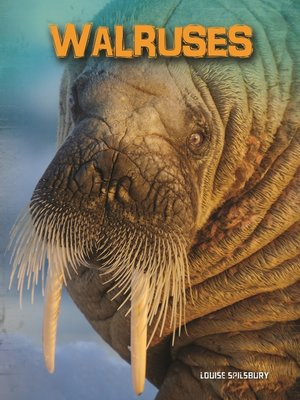 cover image of Walruses