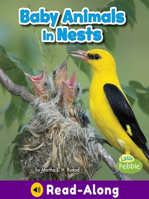 cover image of Baby Animals in Nests