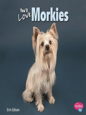 cover image of You'll Love Morkies