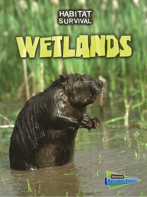 cover image of Wetlands