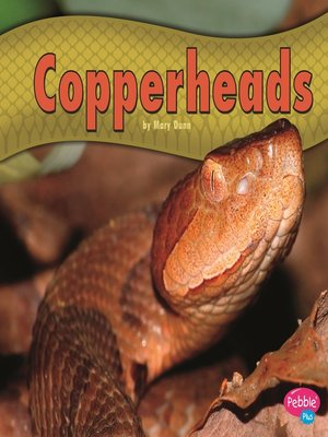 cover image of Copperheads