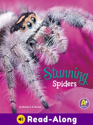 cover image of Stunning Spiders
