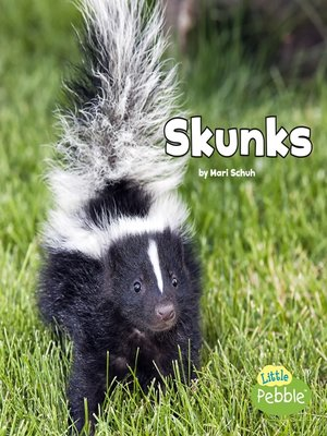 cover image of Skunks