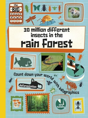 cover image of 30 Million Different Insects in the Rainforest