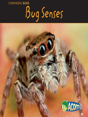 cover image of Bug Senses
