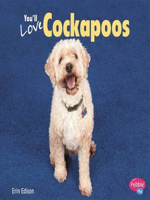 cover image of You'll Love Cockapoos