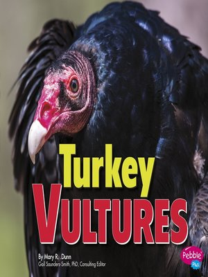 cover image of Turkey Vultures