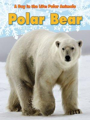 cover image of Polar Bear