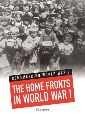 cover image of The Home Fronts In World War I