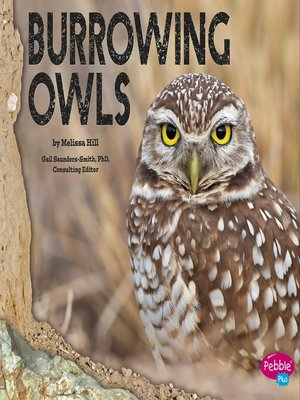 cover image of Burrowing Owls
