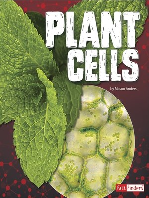 cover image of Plant Cells