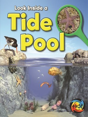 cover image of Tide Pool