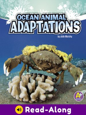 cover image of Ocean Animal Adaptations