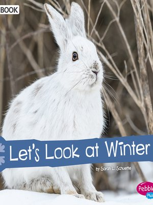 cover image of Let's Look at Winter