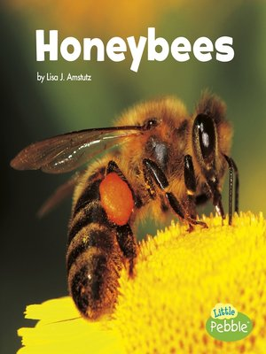 cover image of Honeybees