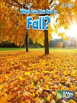 cover image of What Can You See in Fall?