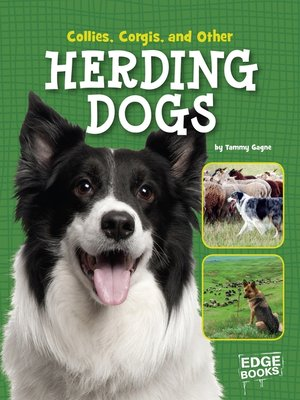 cover image of Collies, Corgies, and Other Herding Dogs
