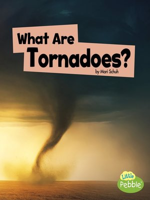 cover image of What Are Tornadoes?