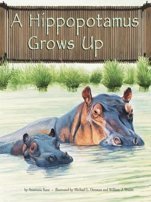 cover image of A Hippopotamus Grows Up