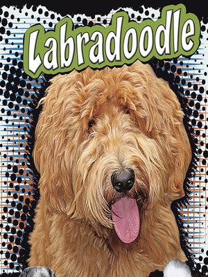cover image of Labradoodle