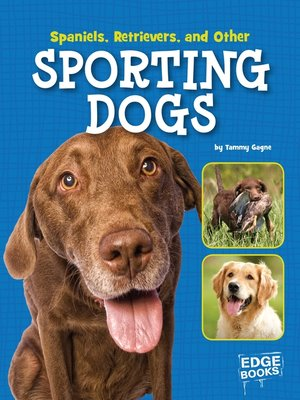 cover image of Spaniels, Retrievers, and Other Sporting Dogs