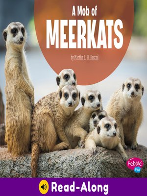 cover image of A Mob of Meerkats