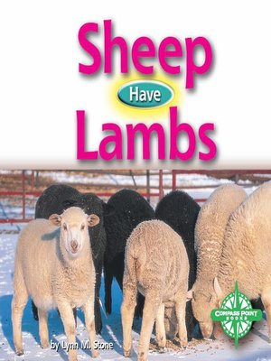 cover image of Sheep Have Lambs