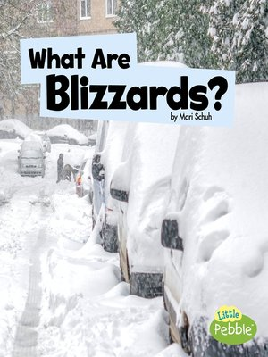 cover image of What Are Blizzards?