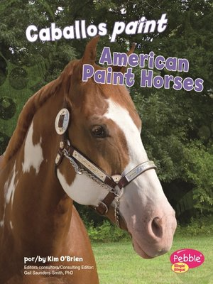 cover image of Caballos paint/American Paint Horses