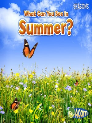 cover image of What Can You See in Summer?