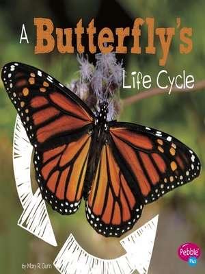 cover image of A Butterfly's Life Cycle