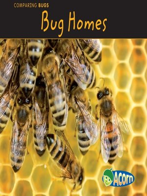 cover image of Bug Homes