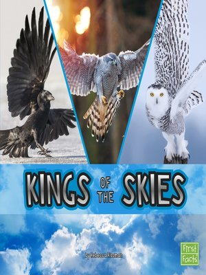 cover image of Kings of the Skies