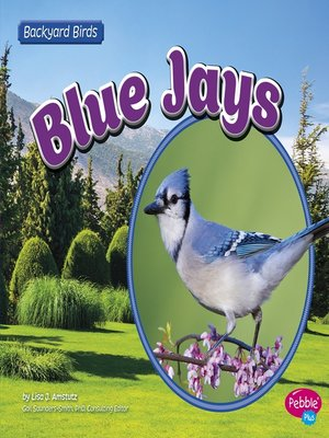 cover image of Blue Jays